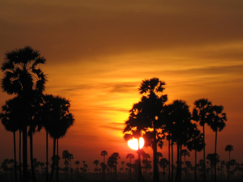 187 Cambodia Landscape